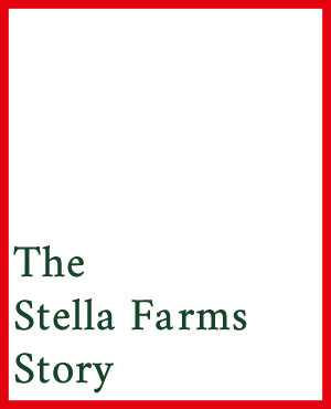 The Stella Farms Story