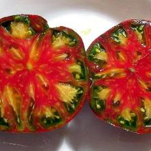 Heirloom Tomatoes - Pink Berkley Tie Dye