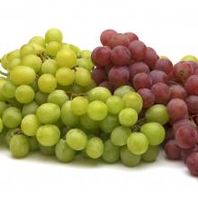 Grapes - Green & Red